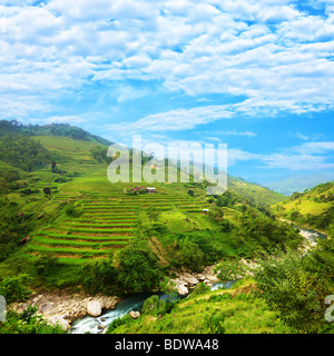 Rice field terraces at nothern Vietnam - Stock Photo