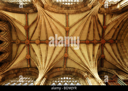 Cross-vaults in the nave of Lichfield Cathedral, Decorated Style, English Gothic, 1256-1340, The Close, Lichfield, - Stock Photo