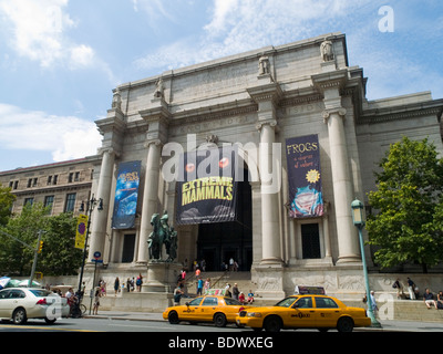 The American Museum of Natural History, New York City USA - Stock Photo