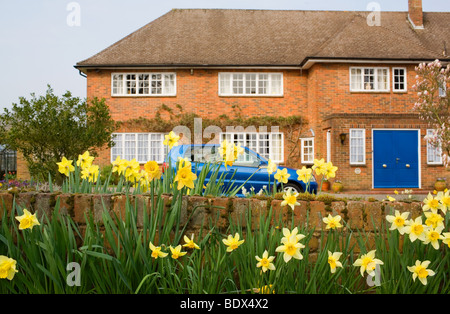 Daffodils and a blue car outside a large detached Suburban home in a wealthy neighborhood. - Stock Photo