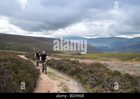 Two men on mountain bikes cycle up the track to Mount Keen, Glen Esk, Scotland. - Stock Photo