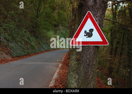 Warning sign, caution squirrels at a forest road - Stock Photo