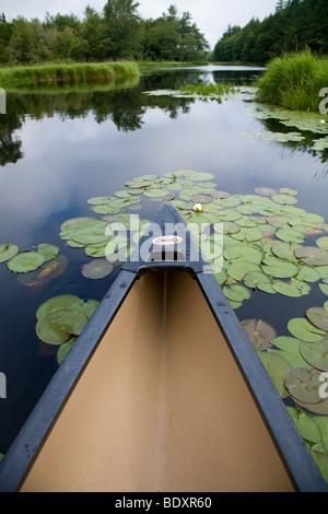 Canoe trip in Kejimkujik National Park, Canada. - Stock Photo