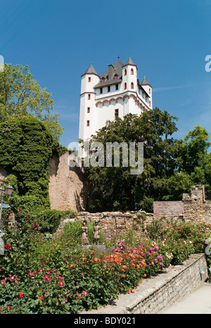 Electoral castle of the archbishops of Mainz, Eltville, Hesse, Germany, Europe - Stock Photo
