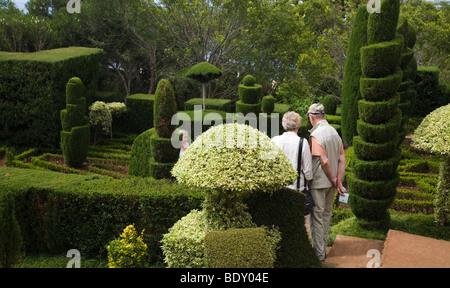 Stunning Visitors Of The Madeira Botanical Garden At Funchal Have Engraved  With Great  An Elderly Couple View A Topiary Display In The Botanical Gardens Of  Funchal In Madeira With Easy On The Eye Garden Restaurant London Also Hatton Gardens In Addition  Cases Covent Garden And Hamilton Botanical Gardens As Well As International House Covent Garden Additionally Garden Snail Reproduction From Alamycom With   Great Visitors Of The Madeira Botanical Garden At Funchal Have Engraved  With Easy On The Eye  An Elderly Couple View A Topiary Display In The Botanical Gardens Of  Funchal In Madeira And Stunning Garden Restaurant London Also Hatton Gardens In Addition  Cases Covent Garden From Alamycom