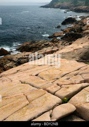 Smooth rock at Lakies Head and Broad Cove on Atlantic Ocean coast in Cape Breton Highlands National Park Nova Scotia - Stock Photo