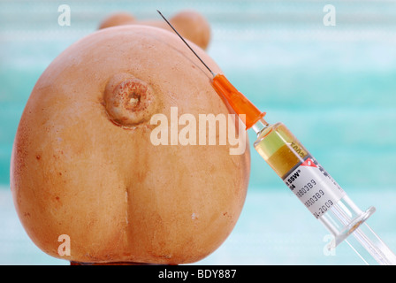 Miniature swine and syringe, vaccination against swine flu - Stock Photo