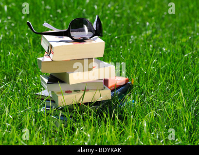 Stacked books and sunglasses on a meadow - Stock Photo
