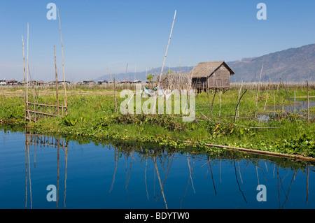 Floating Garden, Inle Lake, Shan State, Burma, Myanmar, Asia - Stock Photo