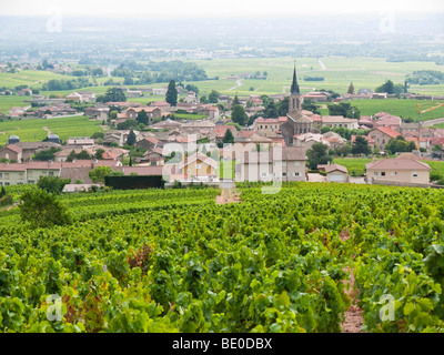 A view over the village of Fleurie amidst the Beaujolais vineyards. - Stock Photo
