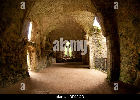 Netley Abbey - Stock Photo