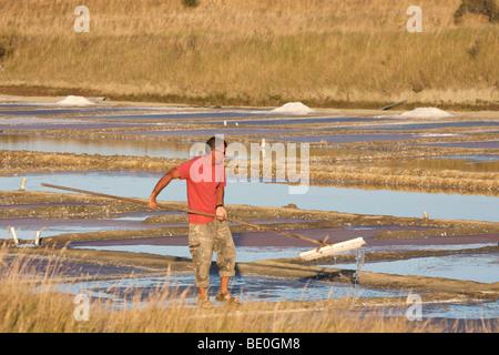 Salt farming, ile de Re, France - Stock Photo
