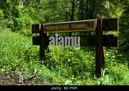 Mierystock Bridge wooden sign along footpath in Forest of Dean, Gloucestershire in Spring with lush green foliage - Stock Photo