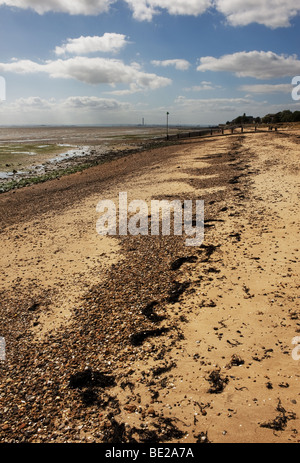 A line of seaweed at high water mark on East Beach at Shoburyness in Essex.  Photo by Gordon Scammell - Stock Photo