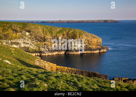 skomer; looking over The Wick to skokholm; wales - Stock Photo