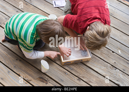 two boys peeking at baby garter snake in a box, outdoors - Stock Photo