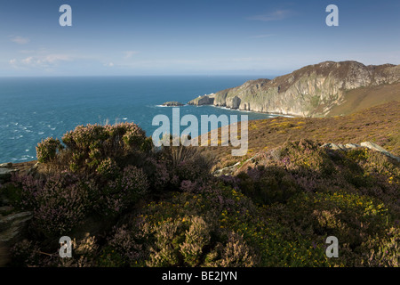 Gogarth Bay & North Stack, on the Isle of Anglesey, Wales, UK - Stock Photo