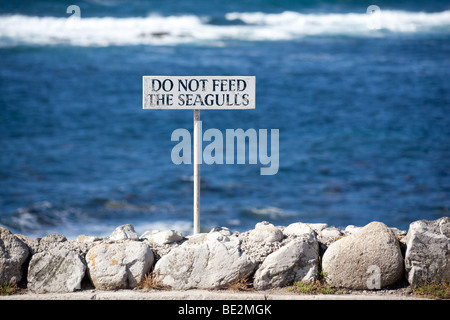 do not feed seagulls, sign at Sennen Cove. - Stock Photo