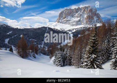 Sassolungo mountain (3181m), Val Gardena, Dolomites, South Tirol, Trentino Alto-Adige, Italy - Stock Photo