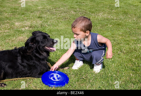 toddler boy playing with his pet border collie cross dog outdoors - Stock Photo
