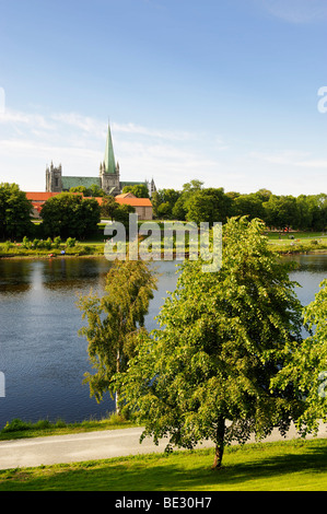 Nidaros cathedral above the river Nidelva, Trondheim, Norway, Scandinavia, Europe - Stock Photo