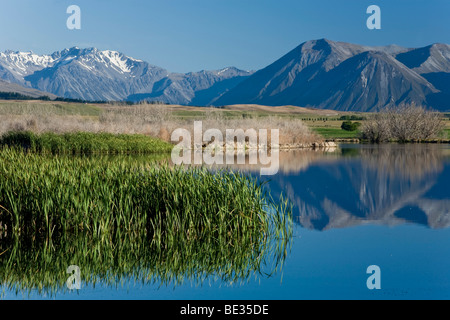 Water reflections on the banks of Lake Maoris in the morning light, South Island, New Zealand - Stock Photo