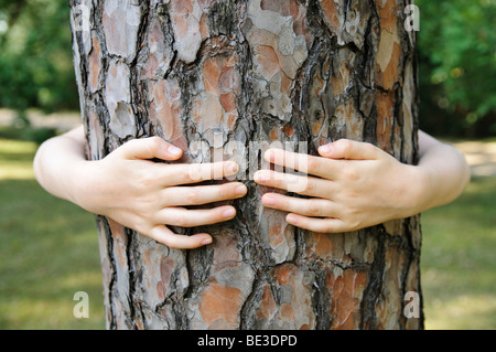 Little girl, 7 years embracing the trunk of a tree - Stock Photo
