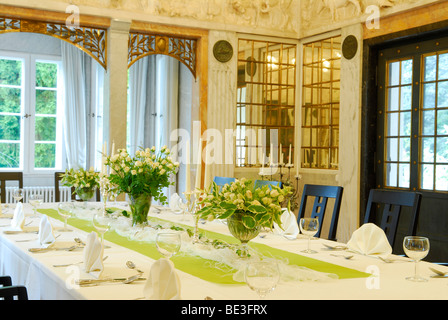 Festively laid table - Stock Photo