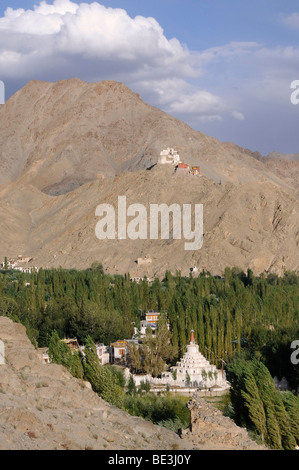 Leh oasis with Gonkhang monastery and castle ruins on the mountain, Ladakh, India, Himalayas, Asia - Stock Photo