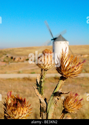 Flowers and windmill against blue sky in La Mancha, Spain. These windmills gained fame after Cervantes' novel Don - Stock Photo