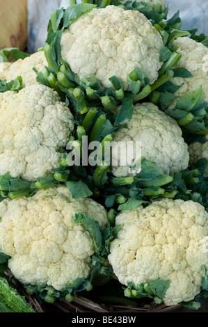 Cauliflowers on an Indian market stall. Andhra Pradesh, India - Stock Photo