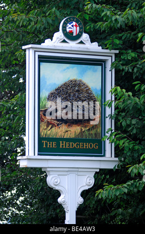 Inn sign, The Hedgehog, Stafford Road, Lichfield, Staffordshire, England, United Kingdom, Europe - Stock Photo