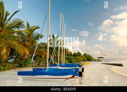 Hobby Car, catamarans, sail boats, side by side, on the beach, palm trees, Maldive island, South Male Atoll, Maldives, - Stock Photo