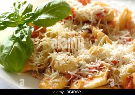Fresh italian gnocchi with tomato sauce, basil and cheese - Stock Photo