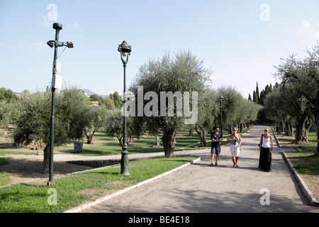 park of cimiez nice south of france - Stock Photo
