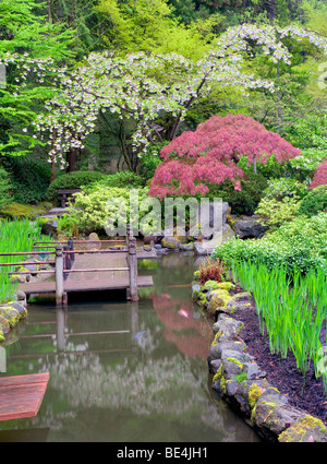 Koi pond and cherry blossoms portland japanese gardens for Portland japanese garden koi