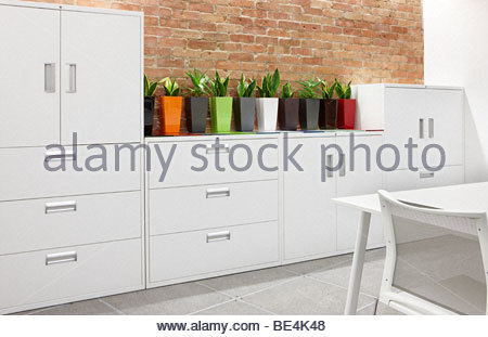 office white metal filing cabinets cactus - Stock Photo