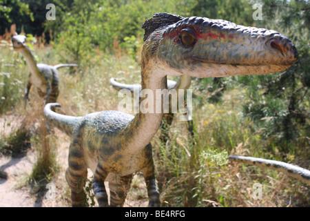 Prehistoric Park,  Coelophysis, real size replica, 2009 - Stock Photo