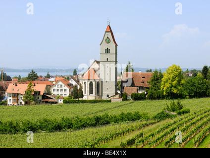 Church of Hagnau on Lake Constance, Baden-Wuerttemberg, Germany, Europe - Stock Photo