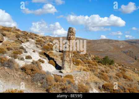 Petrified standing tree trunk, petrified forest between Sigri and Antissa, Lesbos Island, Aegean Sea, Greece, Europe - Stock Photo