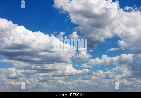 Blue sky with fluffy clouds in sunshine day, panoramic picture