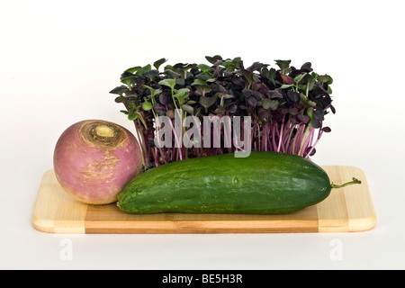 Radish sprouts, mini cucumber and round radish - Stock Photo