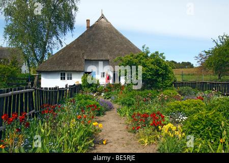 Reed roofed house, Pfarrwitwenhaus, Gross Zicker, Moenchsgut, Ruegen Island, Mecklenburg-Western-Pomerania, Germany, - Stock Photo