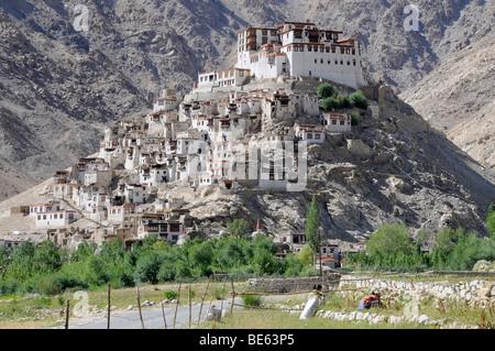 Chemre Monastery, Ladakh, India, Asia - Stock Photo