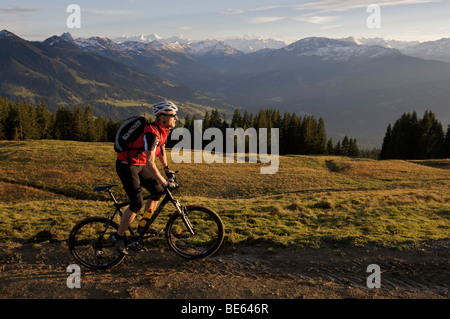 Mountainbiker at Hohe Salve mountain, the Grossvenediger mountain in the back, Tyrol, Austria, Europe - Stock Photo