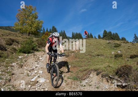 Mountainbiker on Gaisberg mountain, Rettenbach, Tyrol, Austria, Europe - Stock Photo