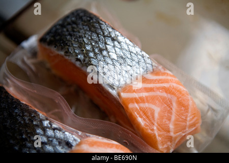 frozen salmon fillets - Stock Photo