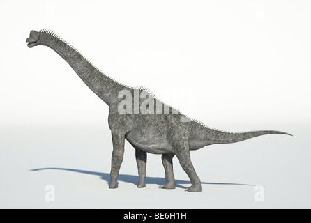 Brachiosaurus walking - Stock Photo