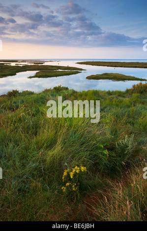 A summer evening overlooking the Harbour entrance and Saltmarshes at Thornham on the North Norfolk Coast - Stock Photo