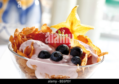 Fruit yoghurt in a glass bowl, corn flakes, blueberries, carambola - Stock Photo